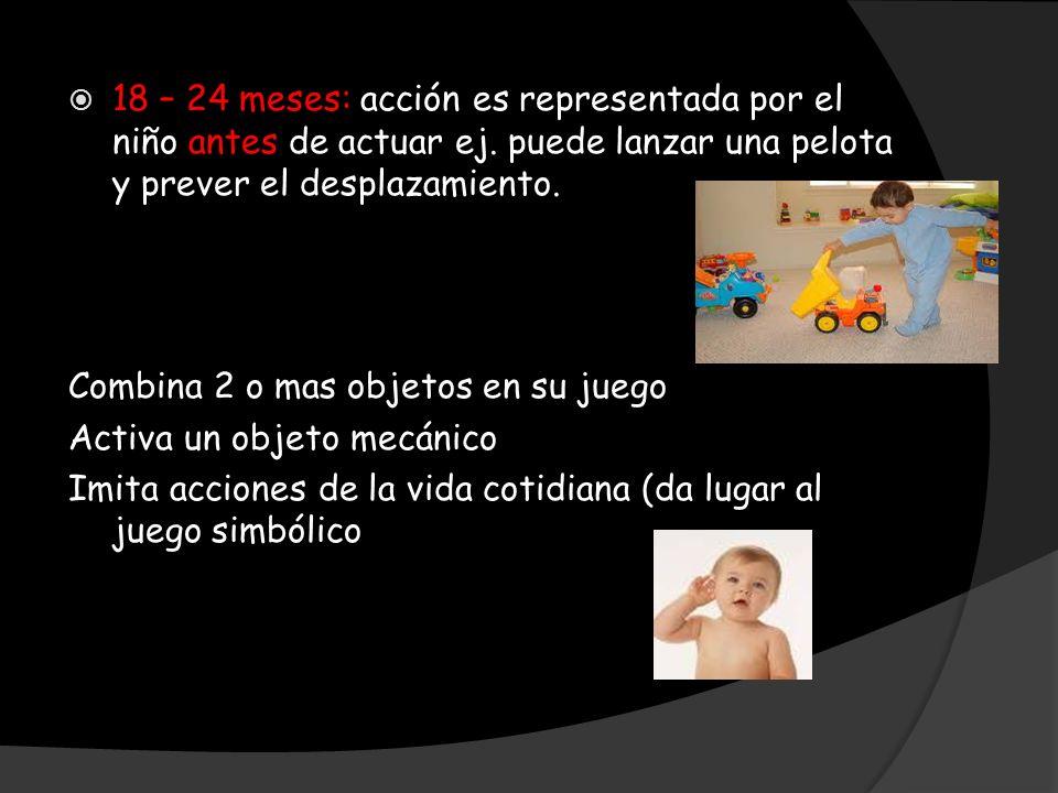 18 – 24 meses: acción es representada por el niño antes de actuar ej