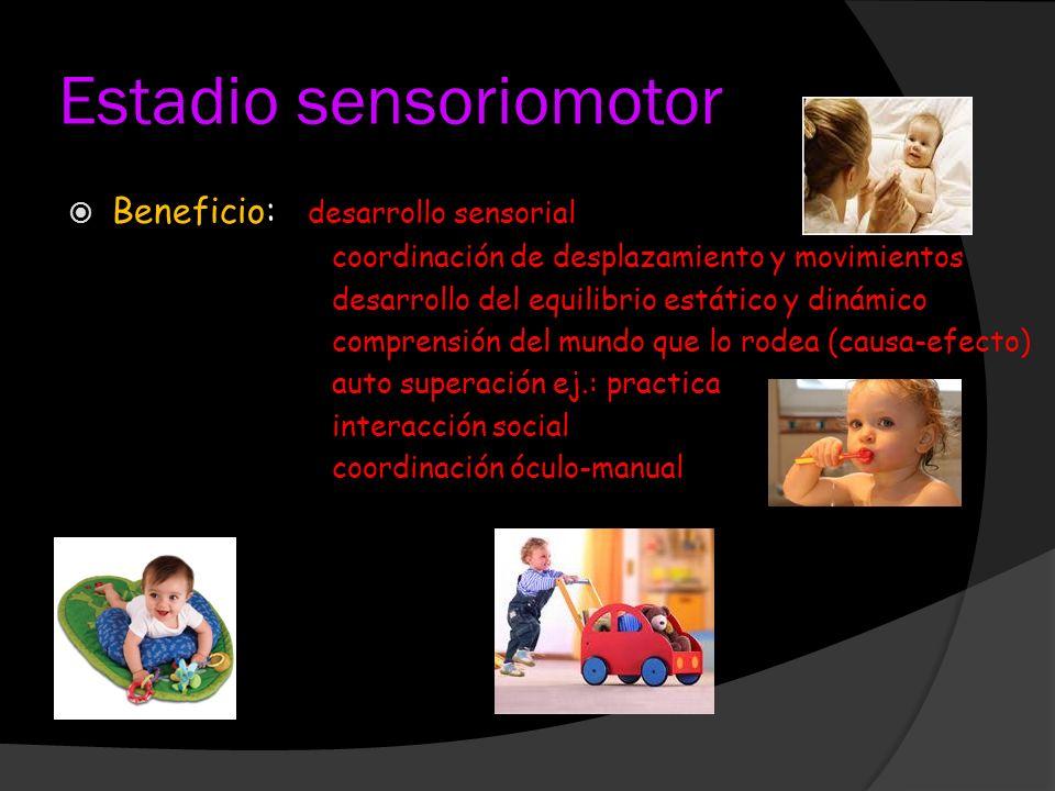 Estadio sensoriomotor