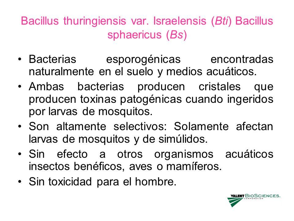 Bacillus thuringiensis var. Israelensis (Bti) Bacillus sphaericus (Bs)