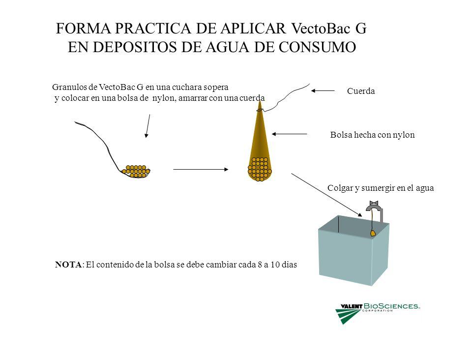 FORMA PRACTICA DE APLICAR VectoBac G EN DEPOSITOS DE AGUA DE CONSUMO