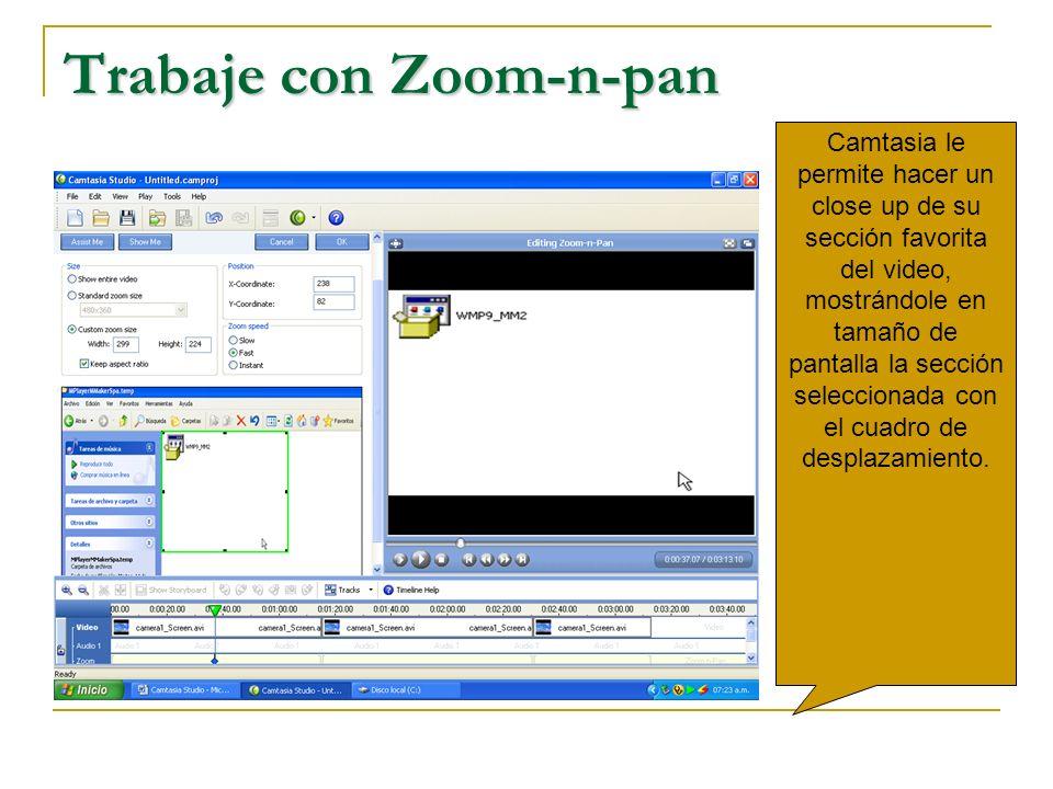 Trabaje con Zoom-n-pan
