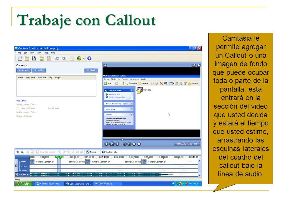 Trabaje con Callout