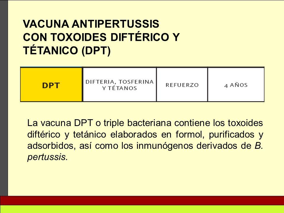 CON TOXOIDES DIFTÉRICO Y TÉTANICO (DPT)