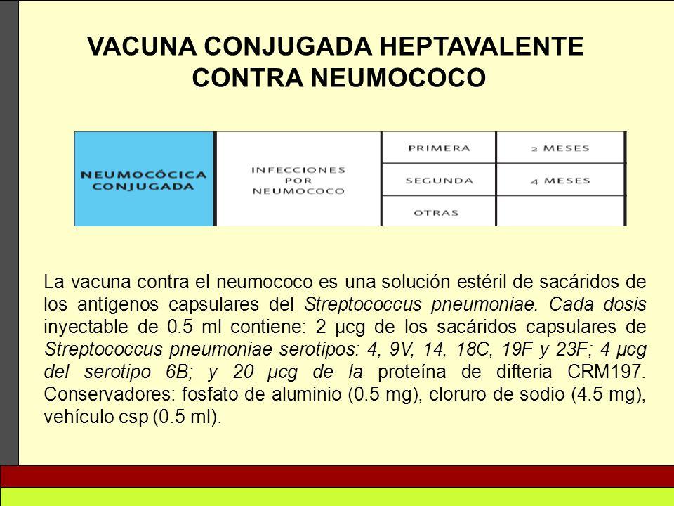 VACUNA CONJUGADA HEPTAVALENTE