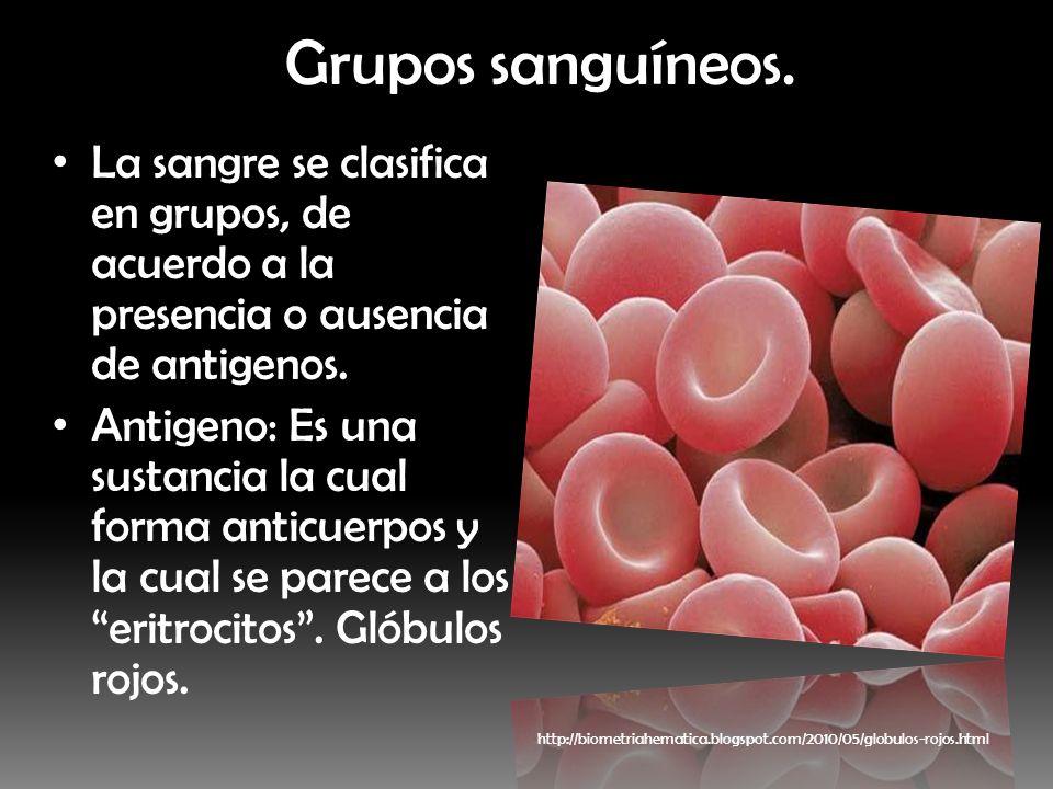Grupos sanguíneos. La sangre se clasifica en grupos, de acuerdo a la presencia o ausencia de antigenos.