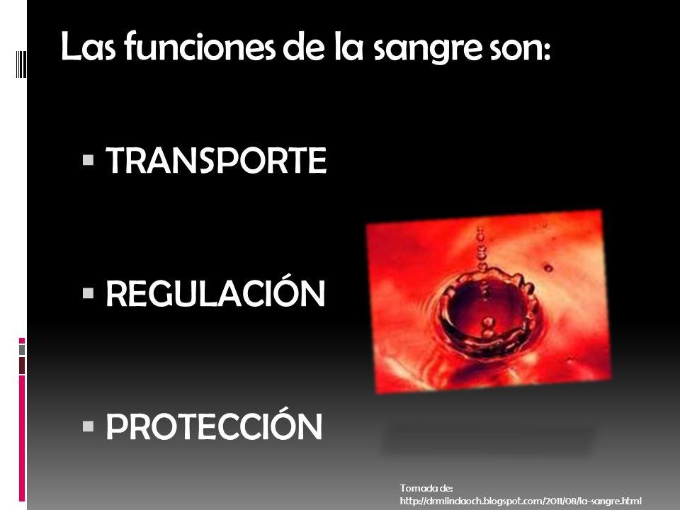 Las funciones de la sangre son: