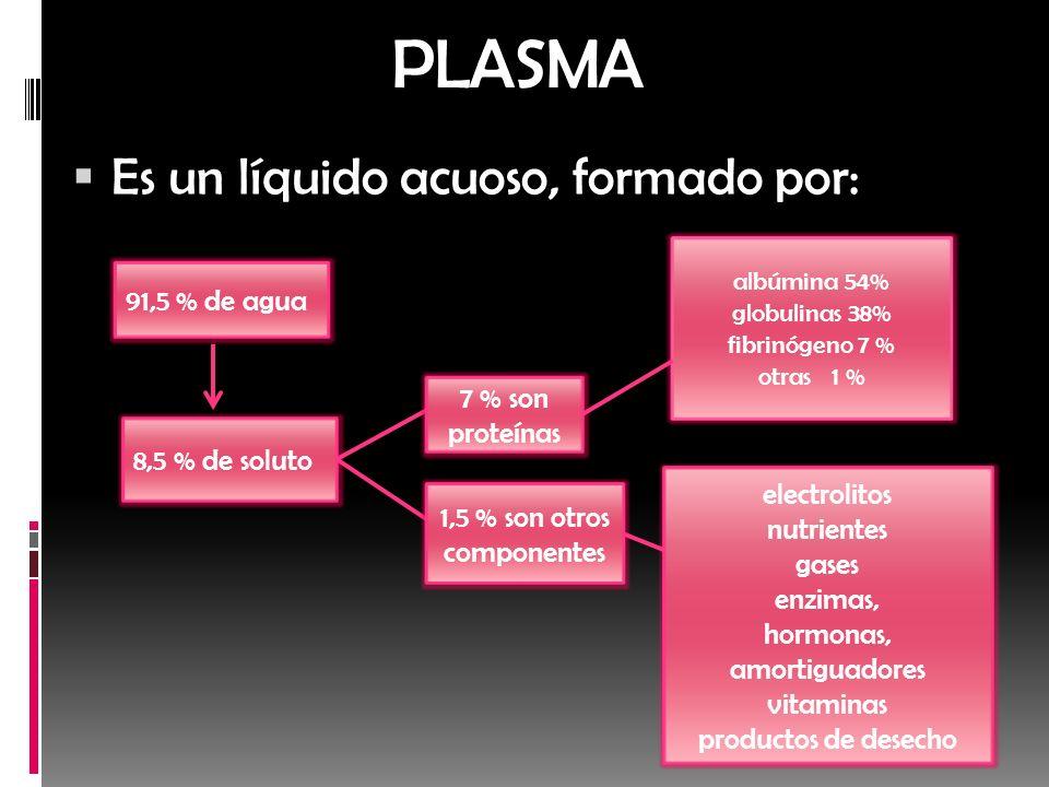 PLASMA Es un líquido acuoso, formado por: 91,5 % de agua 7 % son
