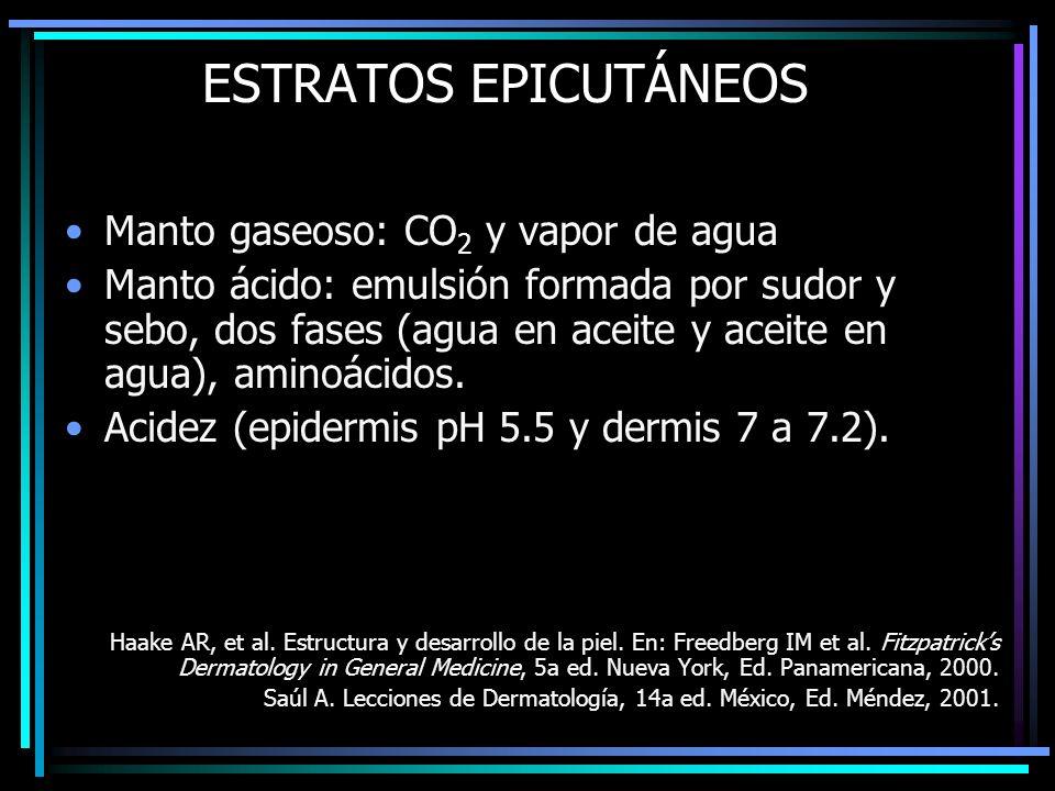 ESTRATOS EPICUTÁNEOS Manto gaseoso: CO2 y vapor de agua