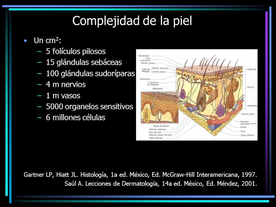 Complejidad de la piel Un cm2: 5 folículos pilosos