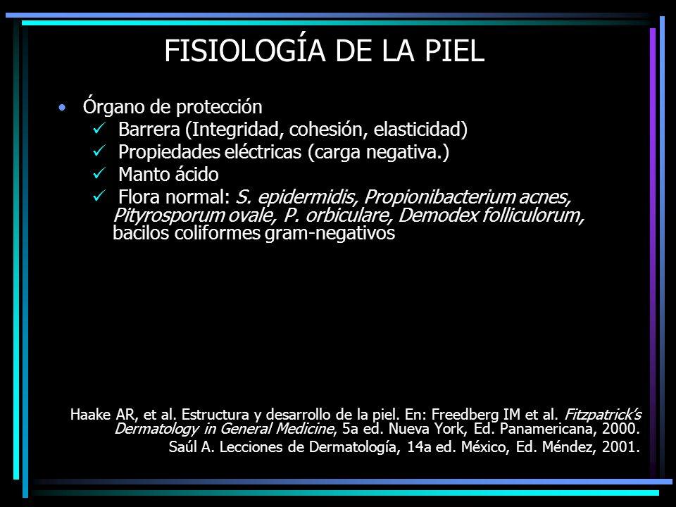 FISIOLOGÍA DE LA PIEL Órgano de protección