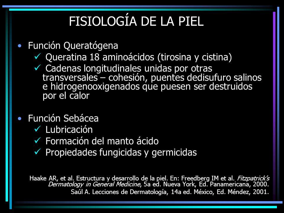 FISIOLOGÍA DE LA PIEL Función Queratógena