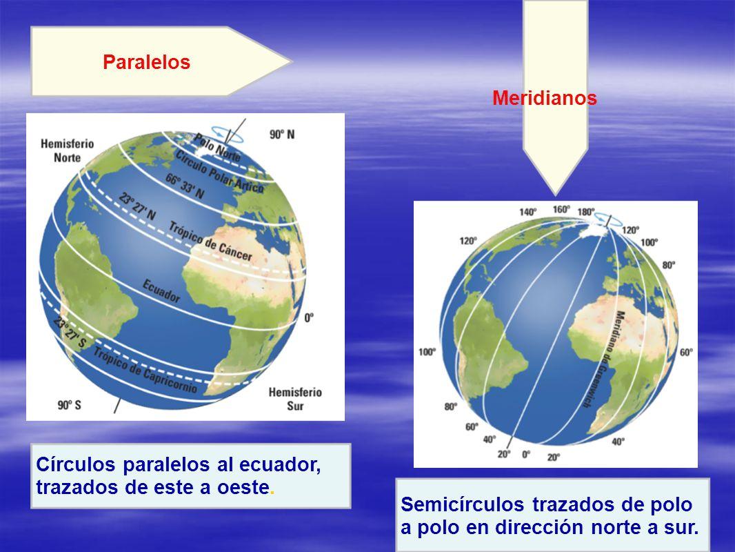 Paralelos Meridianos. Círculos paralelos al ecuador, trazados de este a oeste. Semicírculos trazados de polo.