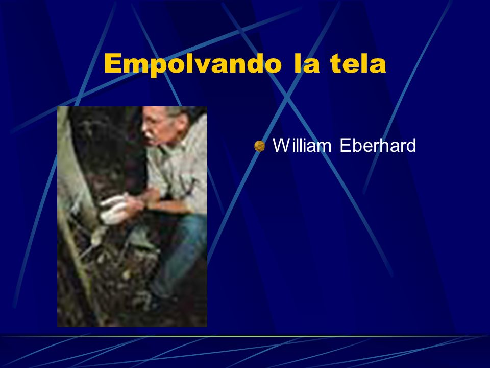 Empolvando la tela William Eberhard