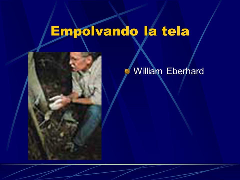 Empolvando la tela William Eberhard