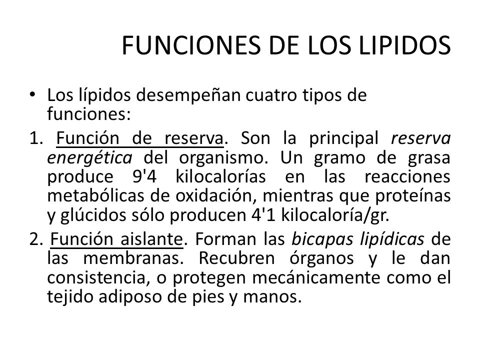 hormonas esteroideas ppt