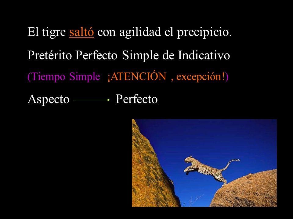 El tigre saltó con agilidad el precipicio.
