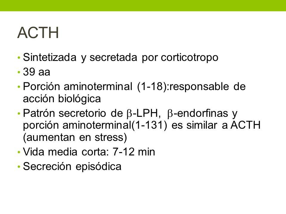 ACTH Sintetizada y secretada por corticotropo 39 aa