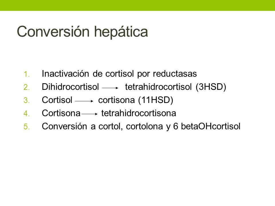 Conversión hepática Inactivación de cortisol por reductasas