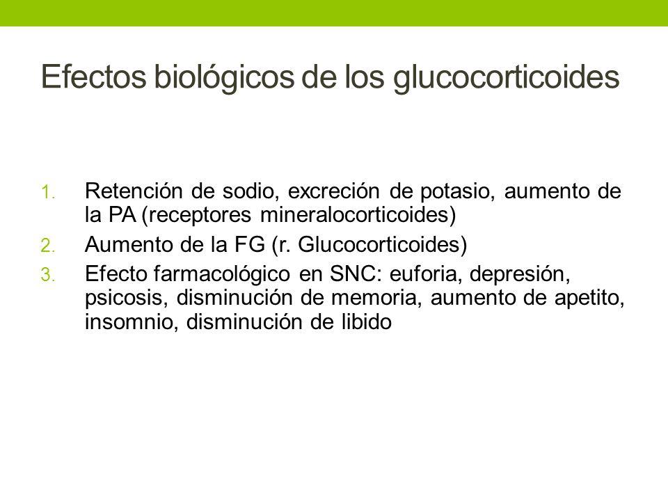 Efectos biológicos de los glucocorticoides