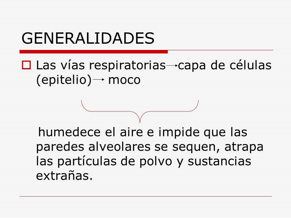 GENERALIDADES Las vías respiratorias capa de células (epitelio) moco