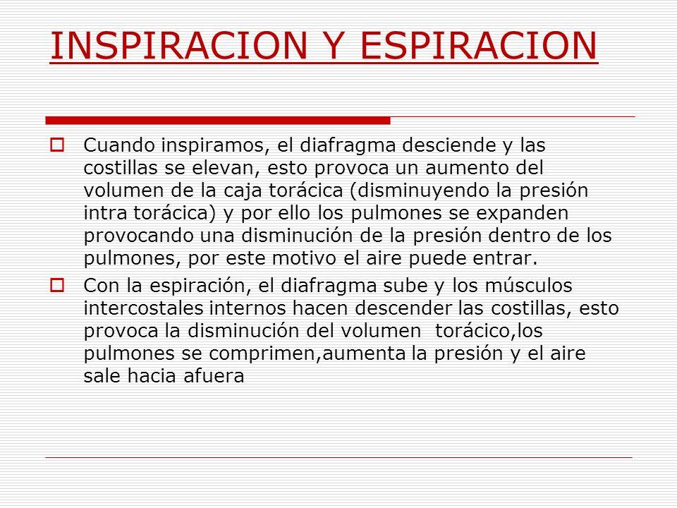 INSPIRACION Y ESPIRACION