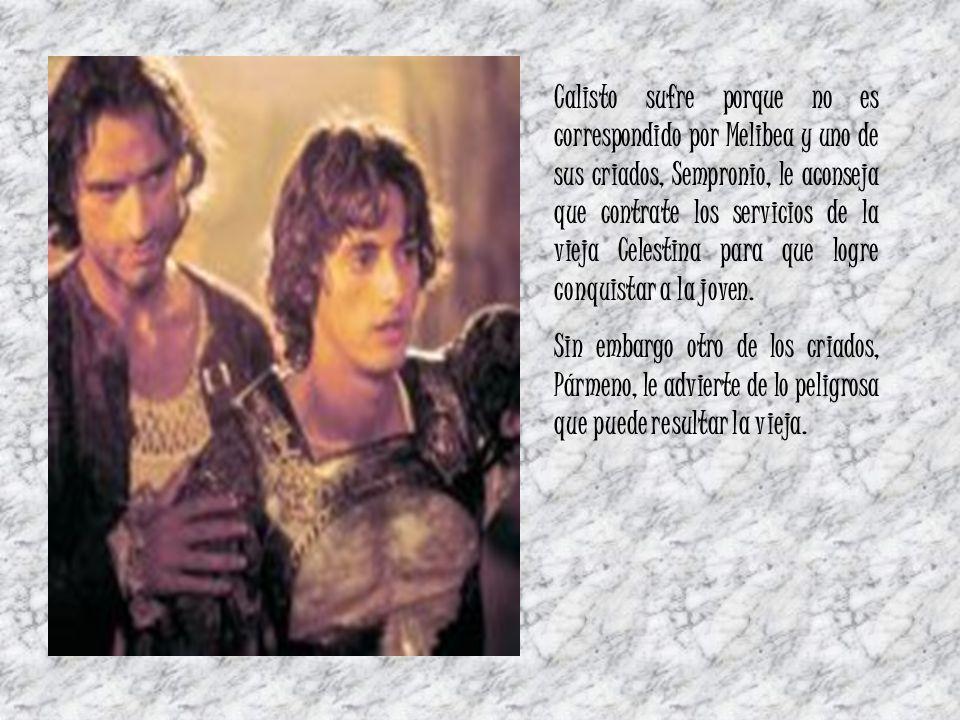 Calisto sufre porque no es correspondido por Melibea y uno de sus criados, Sempronio, le aconseja que contrate los servicios de la vieja Celestina para que logre conquistar a la joven.