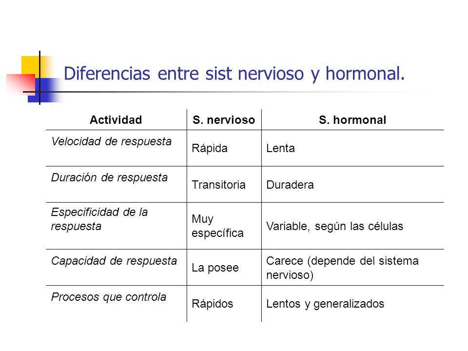 Diferencias entre sist nervioso y hormonal.