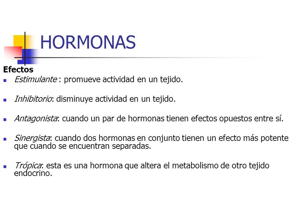 HORMONAS Efectos Estimulante : promueve actividad en un tejido.