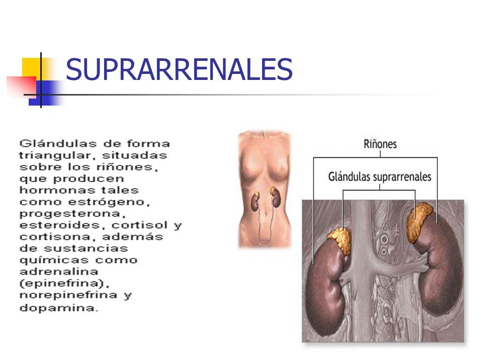 SUPRARRENALES