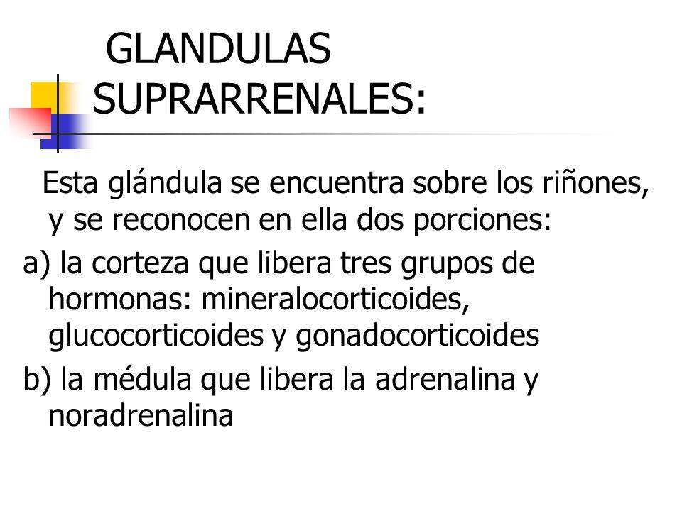 GLANDULAS SUPRARRENALES: