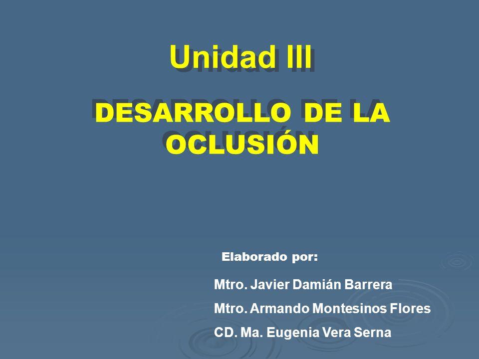 Unidad III DESARROLLO DE LA OCLUSIÓN Mtro. Javier Damián Barrera