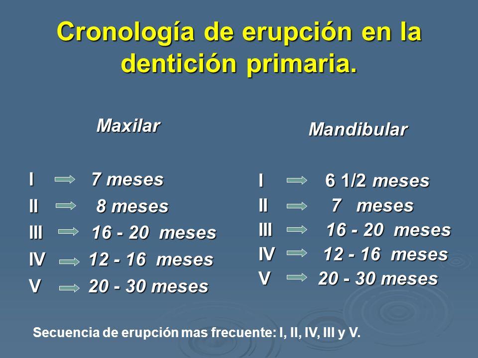 Cronología de erupción en la dentición primaria.