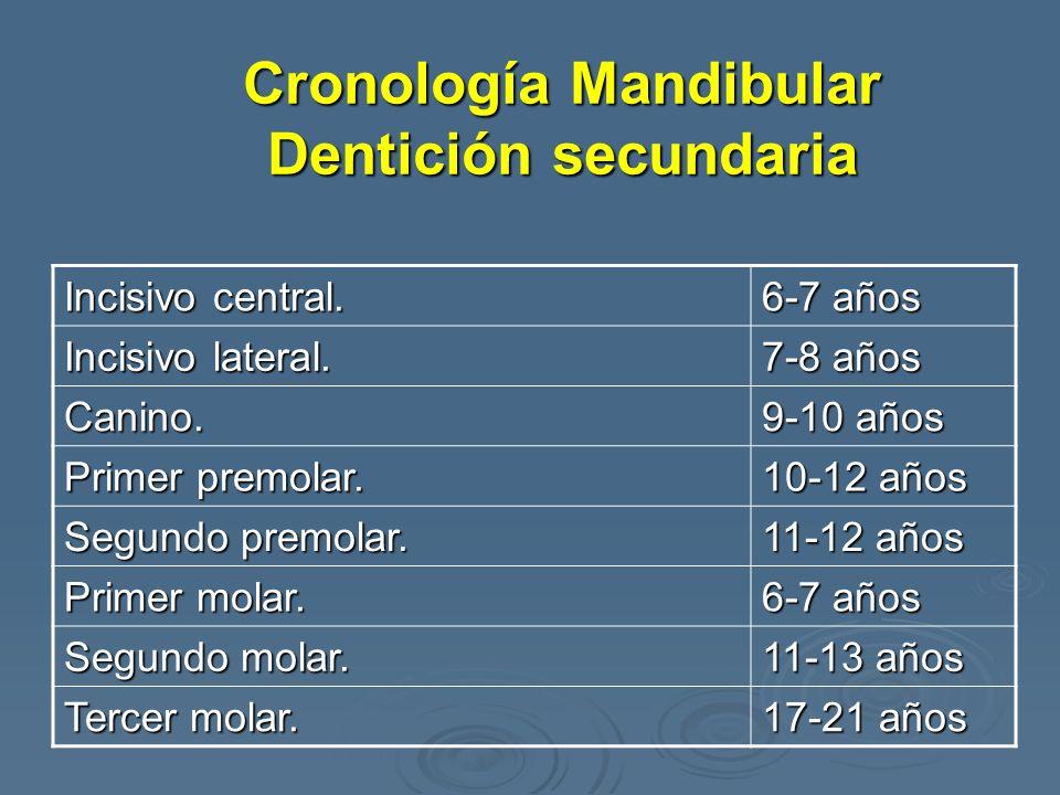 Cronología Mandibular Dentición secundaria
