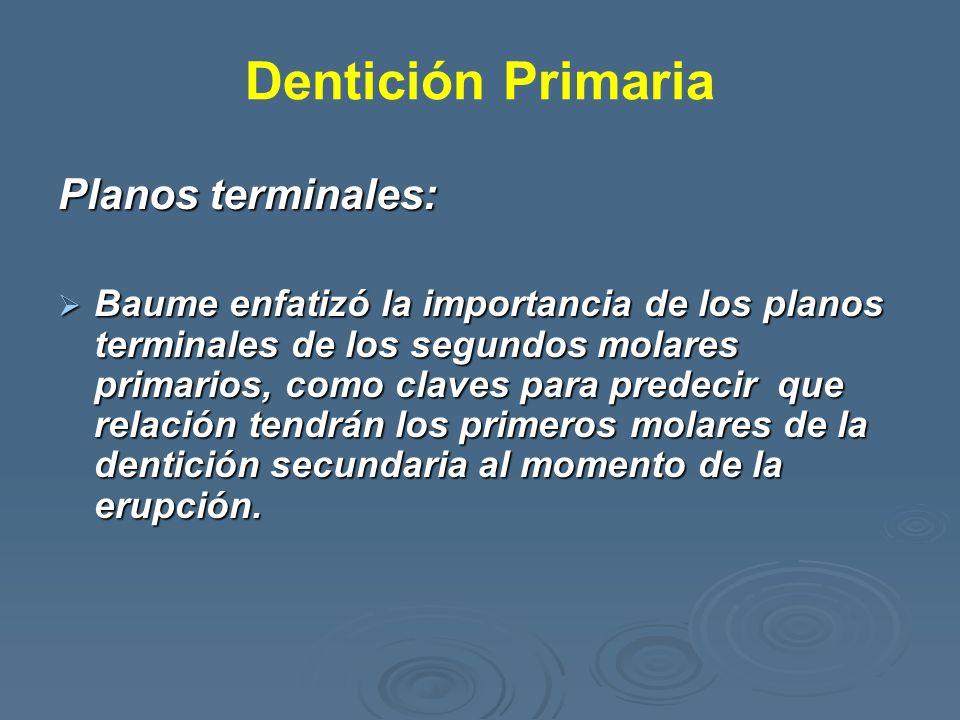 Dentición Primaria Planos terminales: