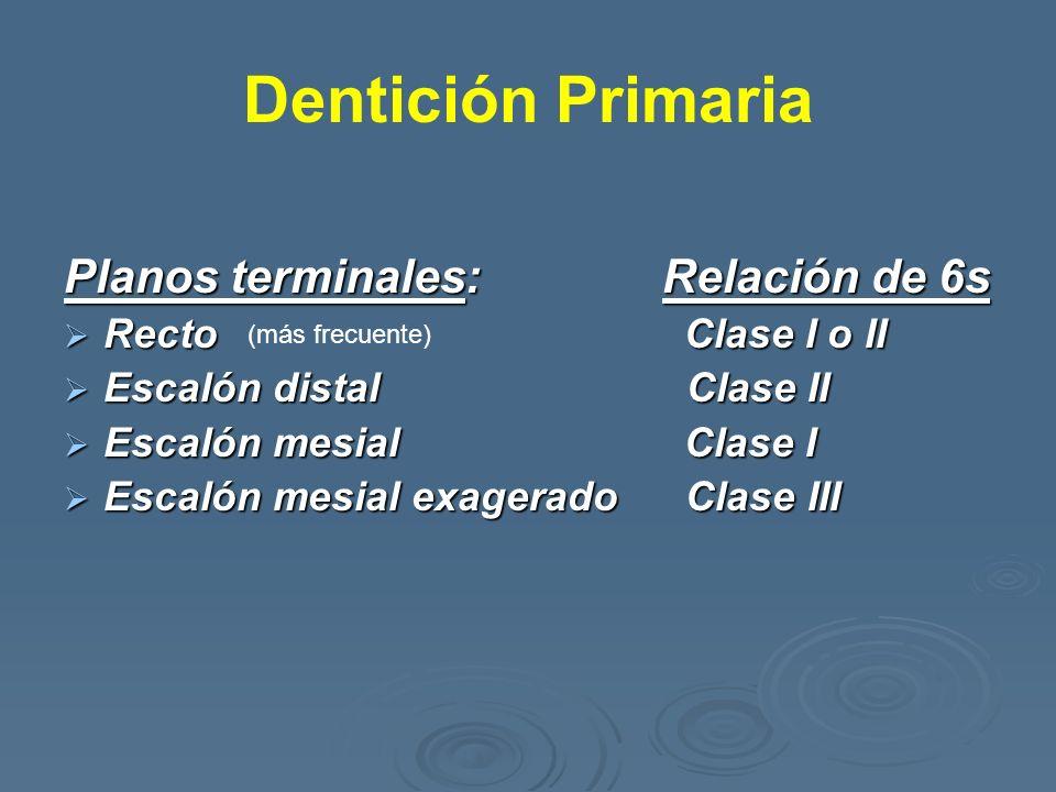 Dentición Primaria Planos terminales: Relación de 6s