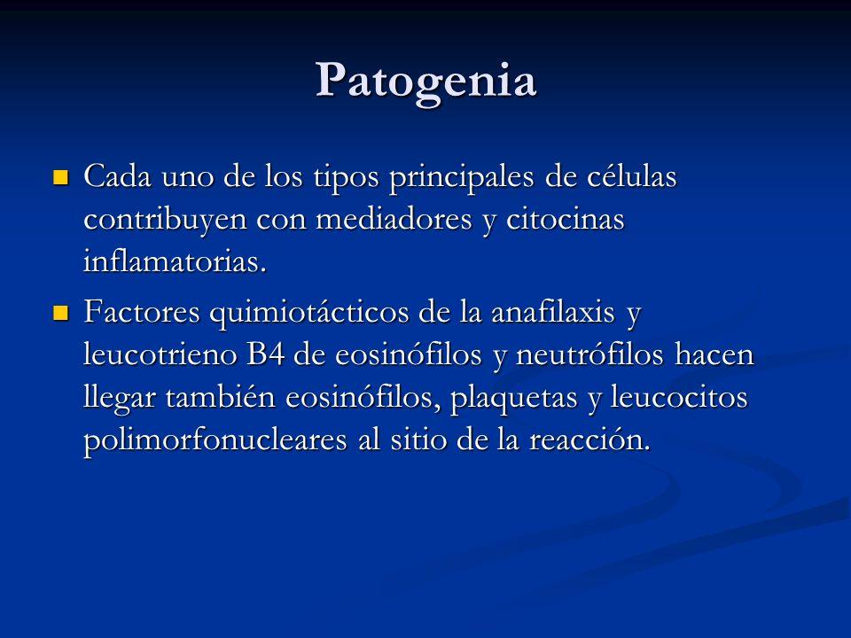 Patogenia Cada uno de los tipos principales de células contribuyen con mediadores y citocinas inflamatorias.