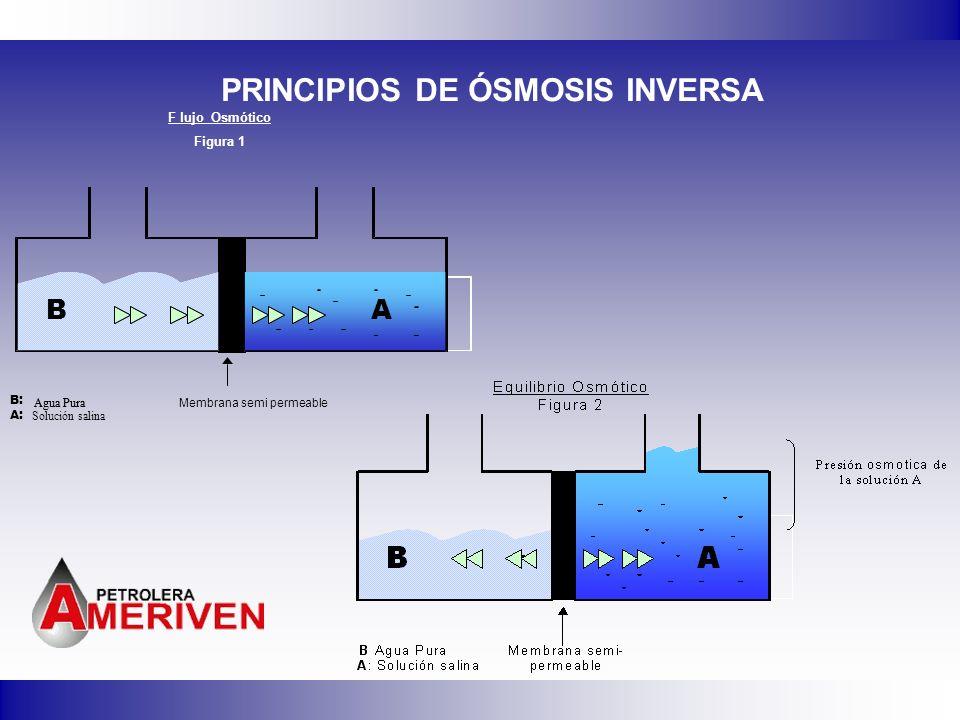 PRINCIPIOS DE ÓSMOSIS INVERSA