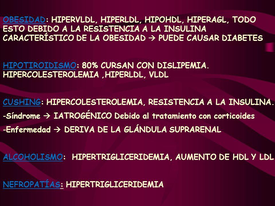 OBESIDAD: HIPERVLDL, HIPERLDL, HIPOHDL, HIPERAGL, TODO ESTO DEBIDO A LA RESISTENCIA A LA INSULINA CARACTERÍSTICO DE LA OBESIDAD  PUEDE CAUSAR DIABETES