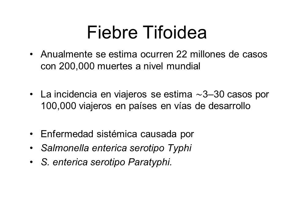 Fiebre Tifoidea Anualmente se estima ocurren 22 millones de casos con 200,000 muertes a nivel mundial.