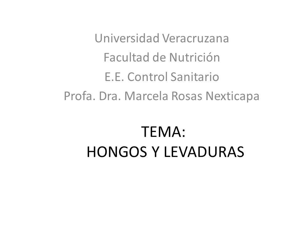 TEMA: HONGOS Y LEVADURAS