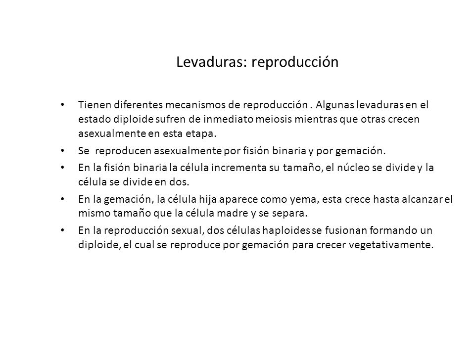 Levaduras: reproducción