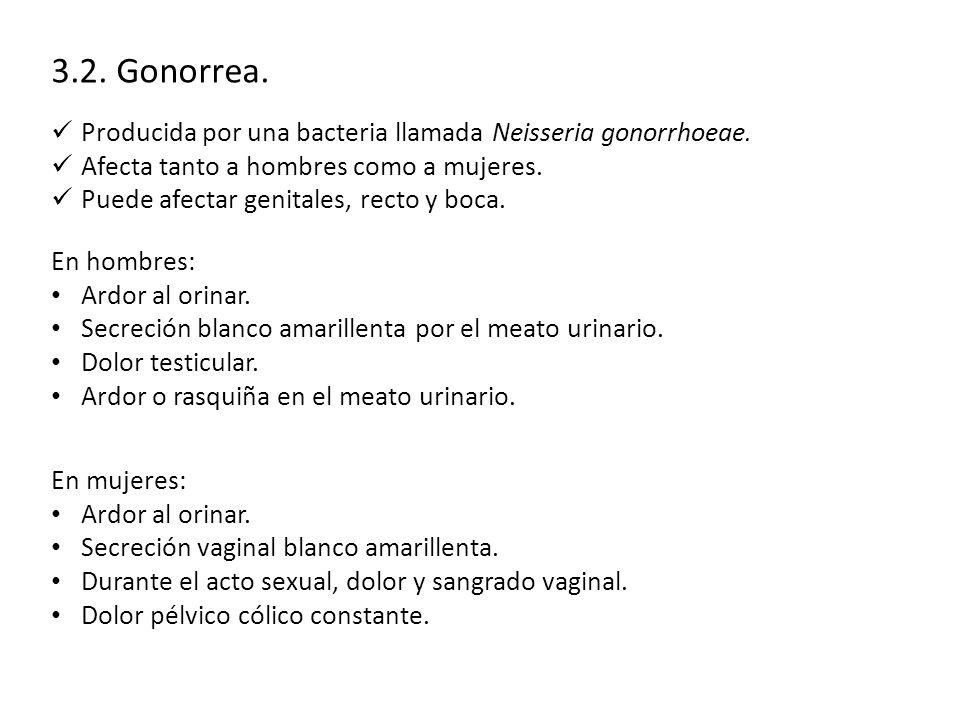 3.2. Gonorrea. Producida por una bacteria llamada Neisseria gonorrhoeae. Afecta tanto a hombres como a mujeres.