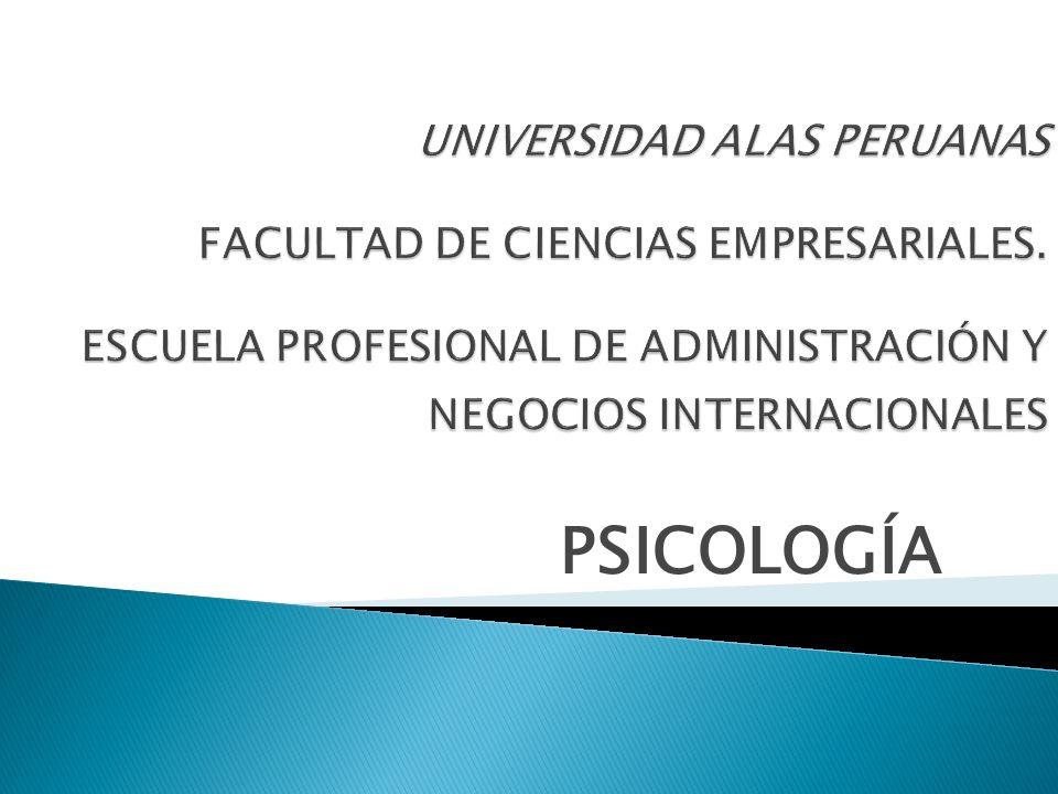 UNIVERSIDAD ALAS PERUANAS FACULTAD DE CIENCIAS EMPRESARIALES