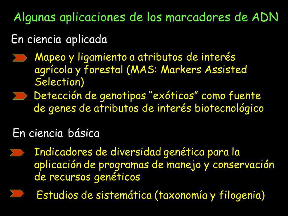Algunas aplicaciones de los marcadores de ADN