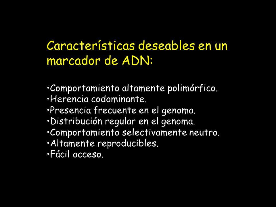 Características deseables en un marcador de ADN: