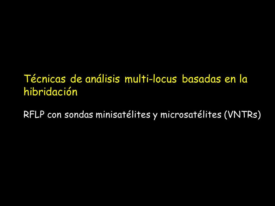 Técnicas de análisis multi-locus basadas en la hibridación