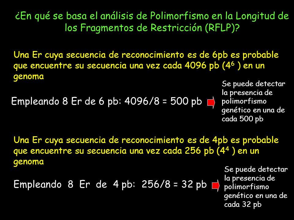 Empleando 8 Er de 6 pb: 4096/8 = 500 pb