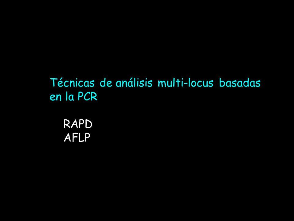 Técnicas de análisis multi-locus basadas en la PCR