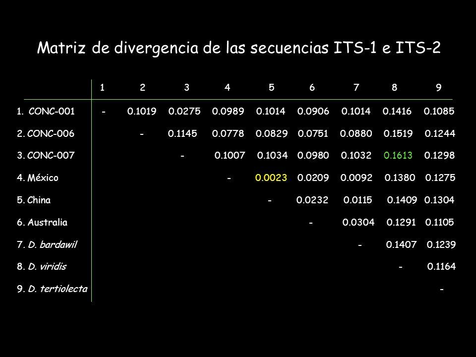 Matriz de divergencia de las secuencias ITS-1 e ITS-2