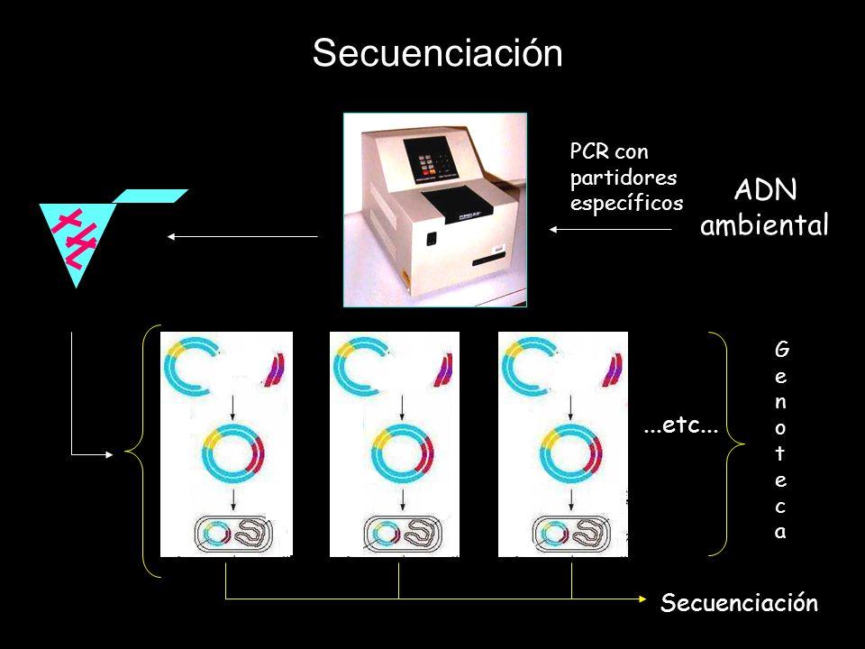 Secuenciación ADN ambiental ...etc... Secuenciación PCR con partidores